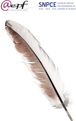 feather_high_logos